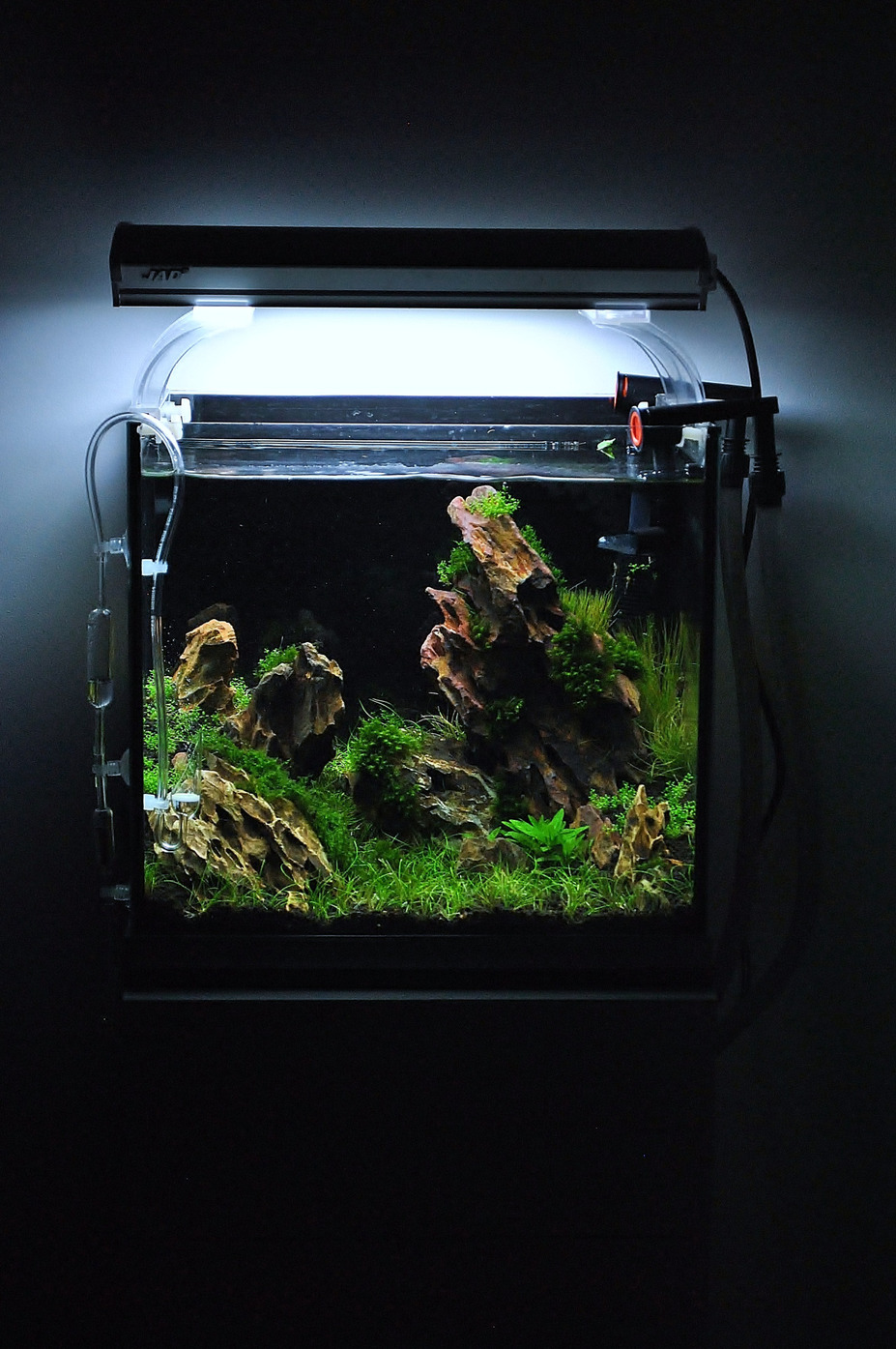 "23L ""The Rocky Plain"" Small 10"