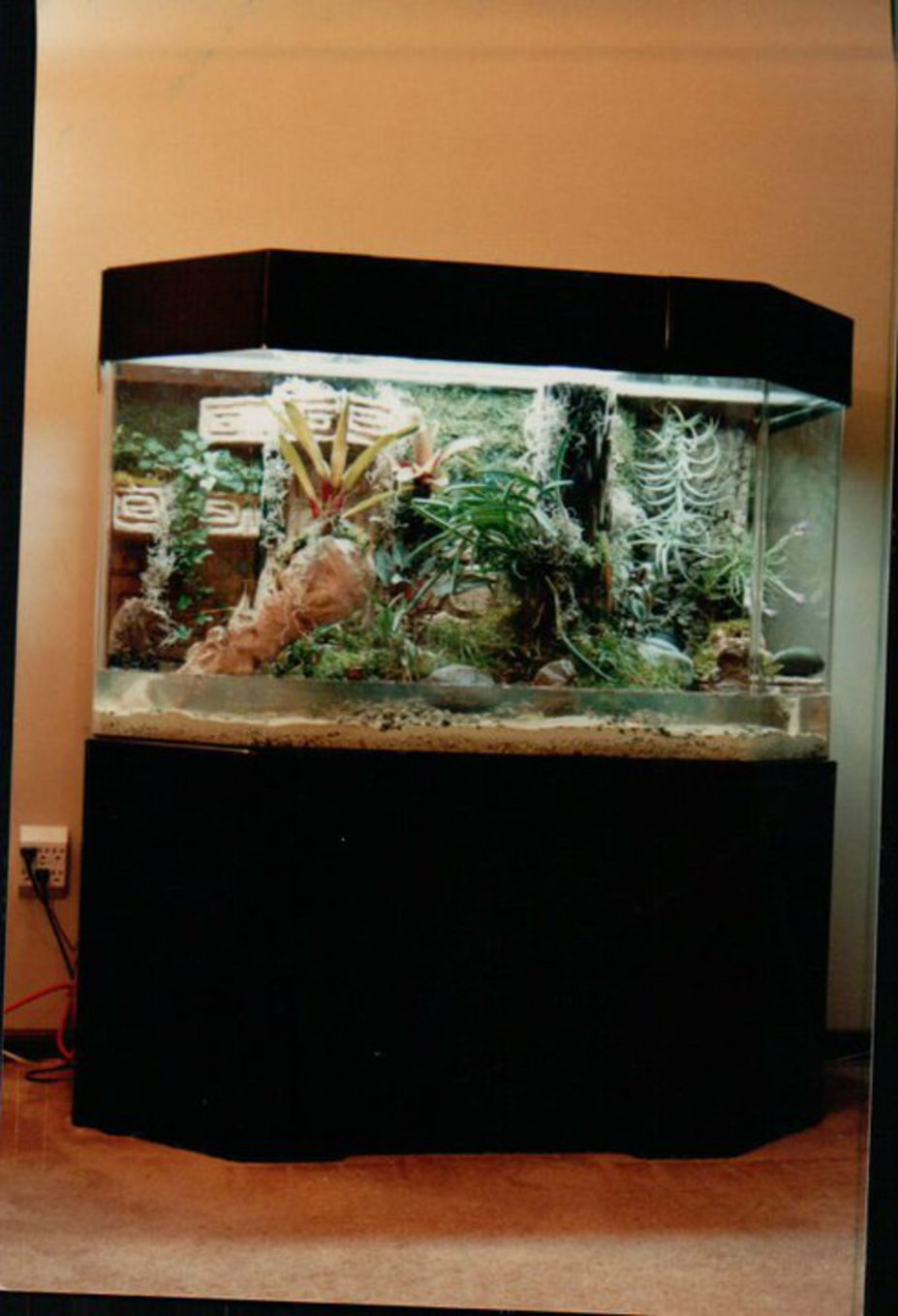 Reef Tank modification Small